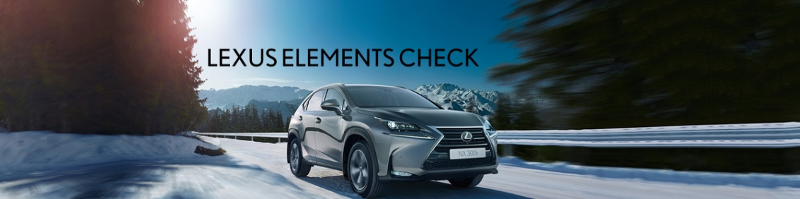 Lexus Elements Check